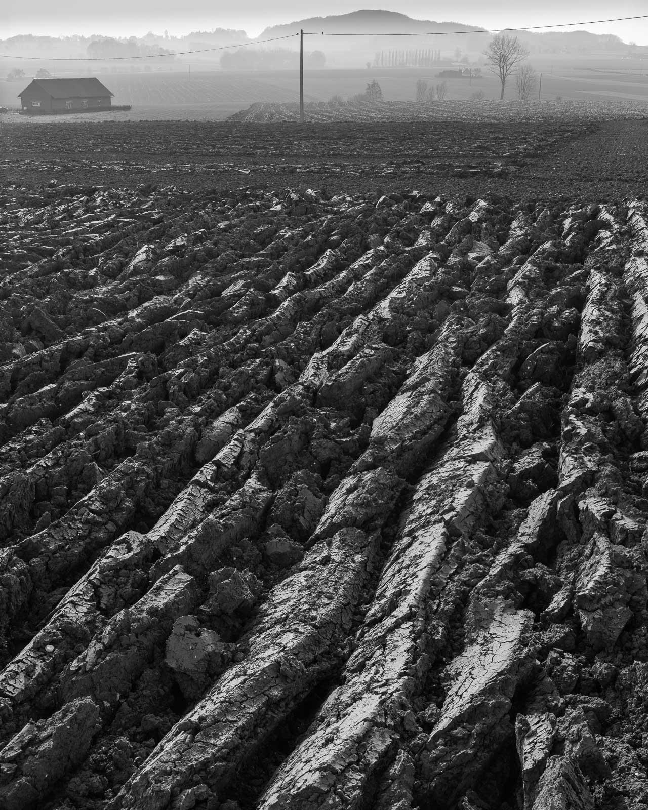 champs de labour